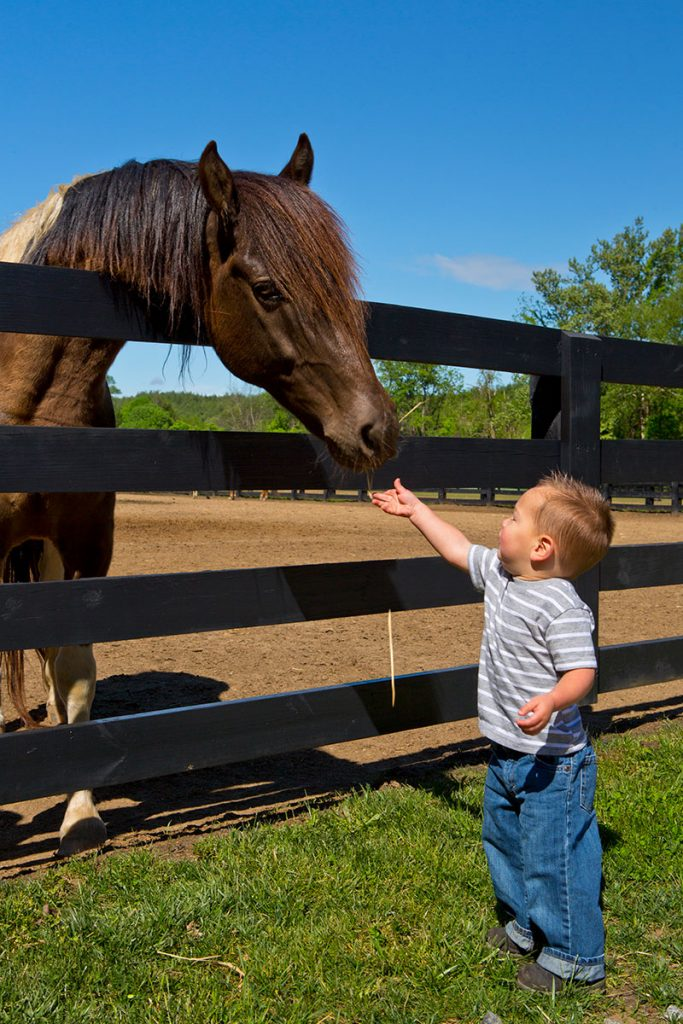 Boy-and-Horse_01_IH4A5165
